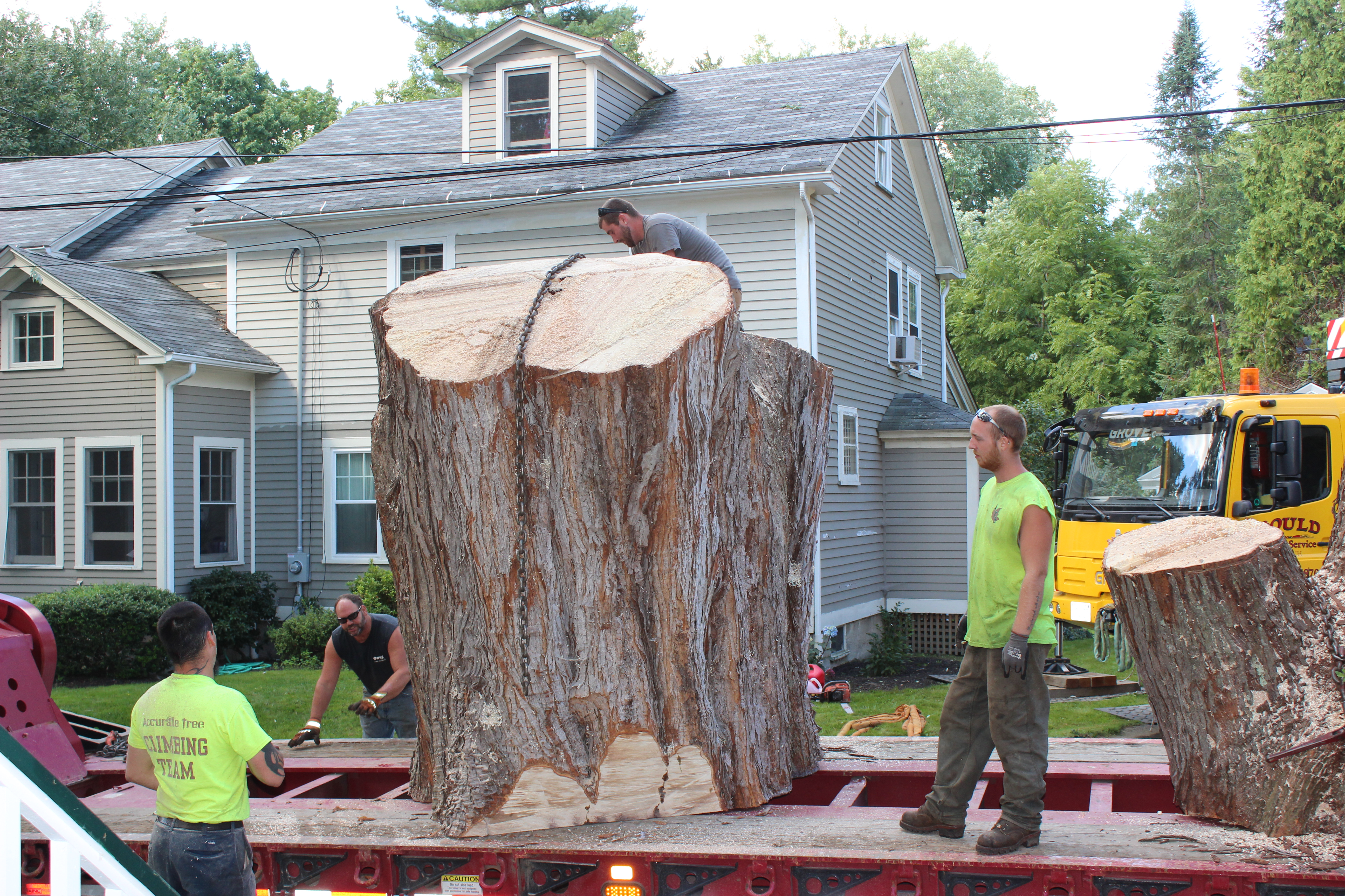 Transporting the Stump