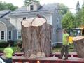 Transporting the Stump