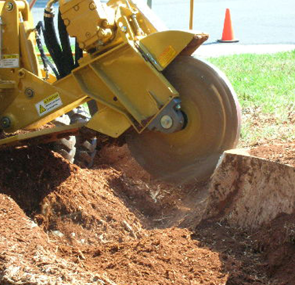 stump grinding nh