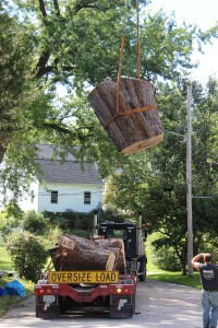 blog; Tree Removal; crane work; stump removal